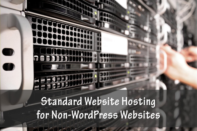 Standard website hosting for non-WordPress websites.